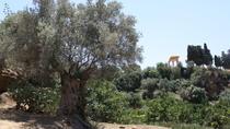 Kolymbetra Garden (Il Giardino della Kolymbetra)