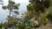 Cap Roig Botanical Garden (Jardi Botanic de Cap Roig)
