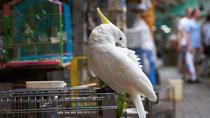 Yuen Po Street Bird Garden