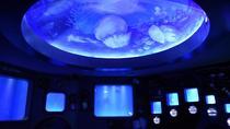 Bang Saen Aquarium (Institute of Marine Science)