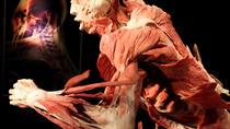 Bodies: The Exhibition Atlanta