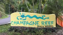 Champagne Reef