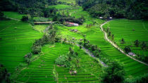 Bali Suggested Itineraries
