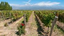 Mendoza Wine Country