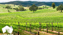 Top Food and Wine Experiences in South Australia