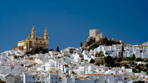 White Villages of Andalucia Tours from Seville