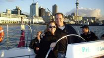 Top 5 Attractions in Auckland