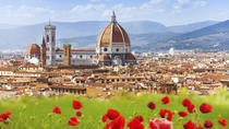 1 Day in Florence