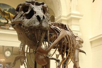 Field Museum of Natural History, Illinois