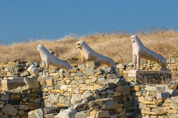 Terrace of the Lions, Delos