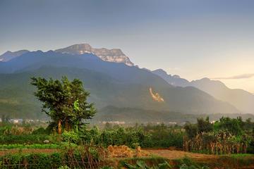 Mt Emei (Emeishan)