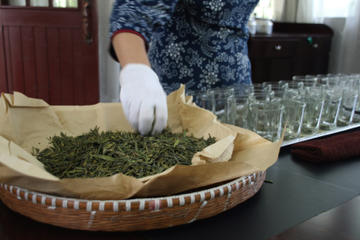Tea Experiences in Hangzhou