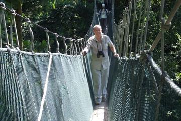Selva Tropical y Canopy Walk