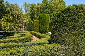 Royal Botanic Garden (Real Jardín Botánico)