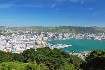 Wellington Cruise Port