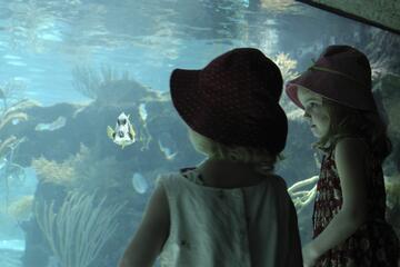 Mazatlan Aquarium