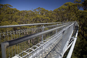 HSBC Treetop Walk