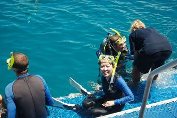 Diving and Snorkeling at the Great Barrier Reef