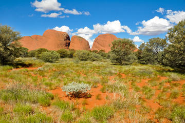 Alice Springs Desert