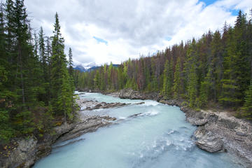 Kicking Horse River, Alberta