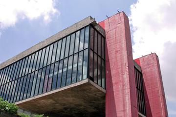 Art Museums of São Paulo