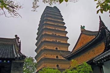 Xian Museum & Small Goose Pagoda (Xiaoyanta)
