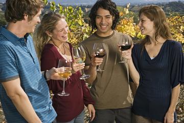 Wine Tours in Vienna