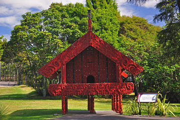Maori Arts and Crafts Institute (Te Puia)