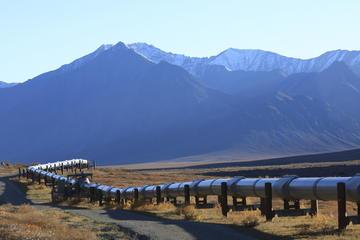 Trans-Alaska Pipeline (Alyeska Pipeline Visitor Center)
