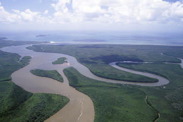 Daintree Rainforest, Port Douglas