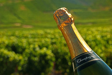 Wine Lover's Guide to Champagne