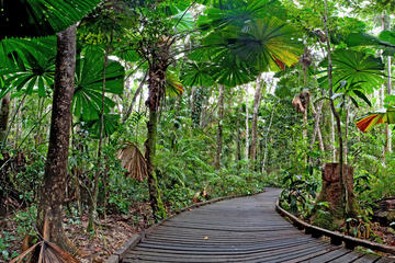 Outdoor Activities in Palm Cove
