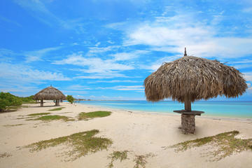 Top Beaches in Aruba