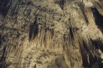 Visiting the Waitomo Caves