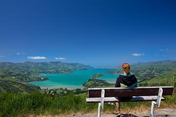 Akaroa Tours from Christchurch
