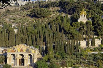 Mount of Olives, Israel