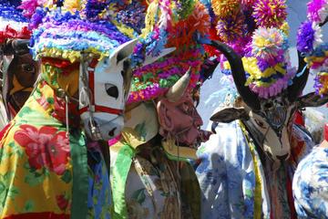 Veracruz Carnival, Nightlife, and Music