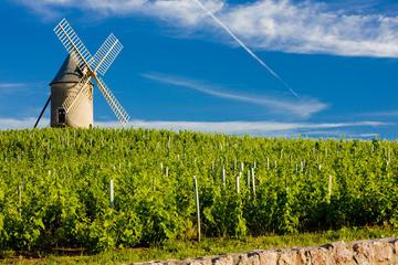 Rhone Valley Region, Provence