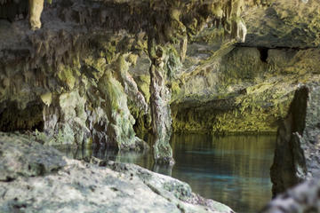 Best Cenotes around Cancun and the Yucatan Peninsula