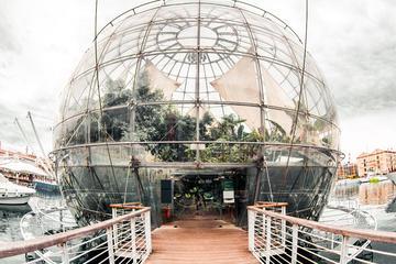 Genoa Aquarium, Genoa