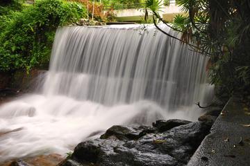 Penang Botanic Gardens