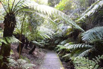 Darwin Botanic Gardens, Darwin