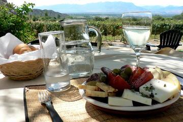 Wine in Salta
