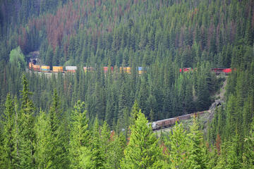 Spiral Tunnels, Alberta