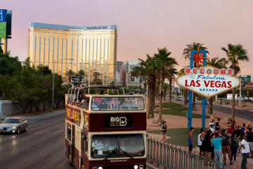 Big Bus Sightseeing Tours in America