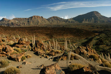 Exploring Teide National Park