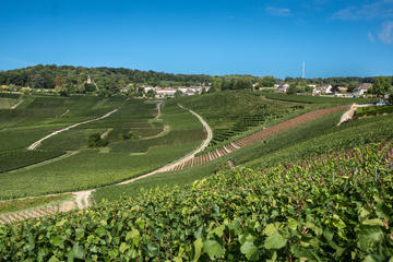 Hautvillers, Champagne