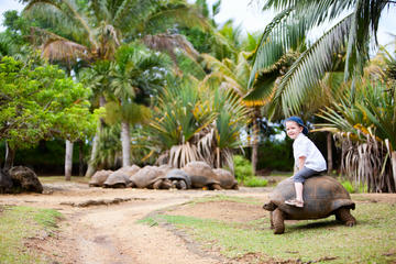 3 Days in Mauritius: Suggested Itineraries