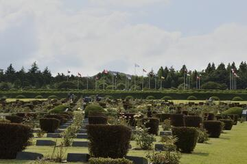 UN Memorial Cemetery