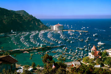 Catalina Island Helicopter Tours